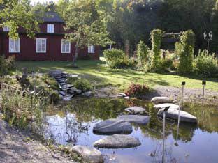 Dammen vid örtagården, Brunnsparken, Dals Rostock.