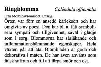 Plastad skylt med text av Kerstin Ljungqvist.