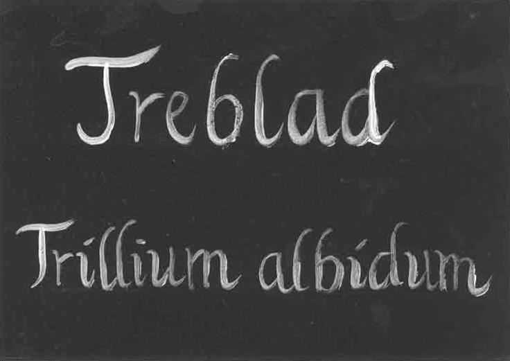 Svart plåtskylt, handtextad av Kerstin Ljungqvist.