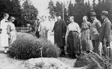 Medicinalväxtkursen 1922
