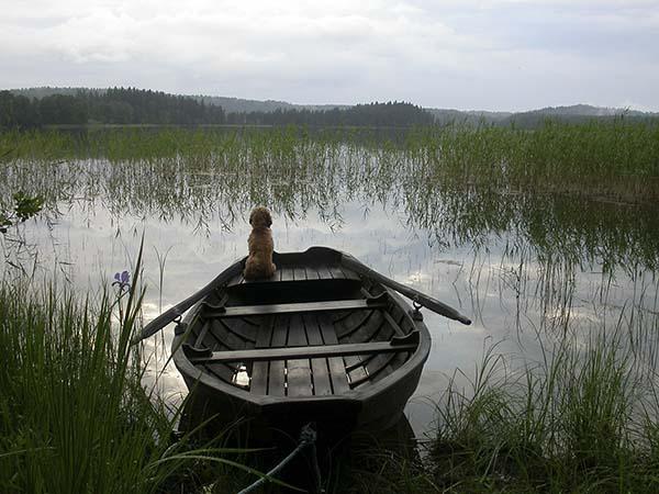 Båten vid stugan