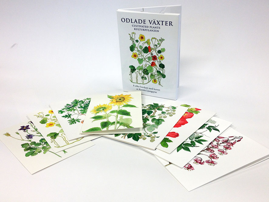 Förpackning till brevkort med odlade växter av Kerstin Ljungqvist.