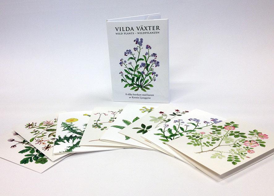 Förpackning till brevkort med vilda växter av Kerstin Ljungqvist.